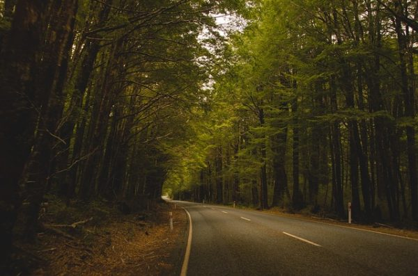 country-road-1149161_640