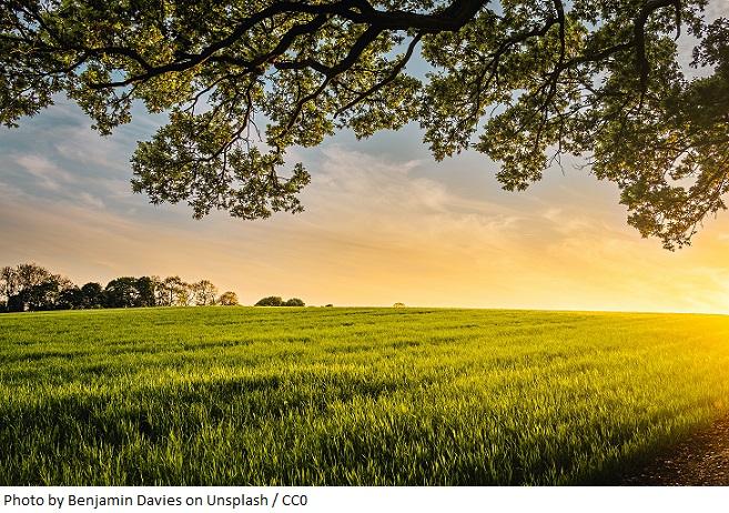 OKAM poszerza swój bank ziemi - deweloper kupił grunt pod inwestycję mieszkaniową o powierzchni 2,13 ha w Katowicach