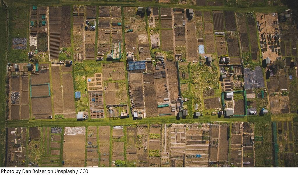 GUS: Koniunktura w gospodarstwach rolnych w drugim półroczu 2020 roku
